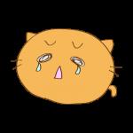 らくがき素材 ネコ_大泣き